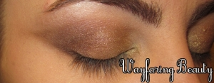 Apply West (deep reddish brown) to the outer v, blending where it meets other shades